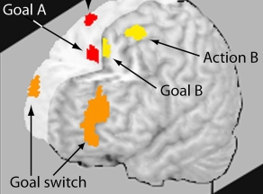 science-scan-goal-switch
